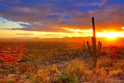 sunset in Arizona, Living in Phoenix vs Florida, Living in Phoenix real estate (12)