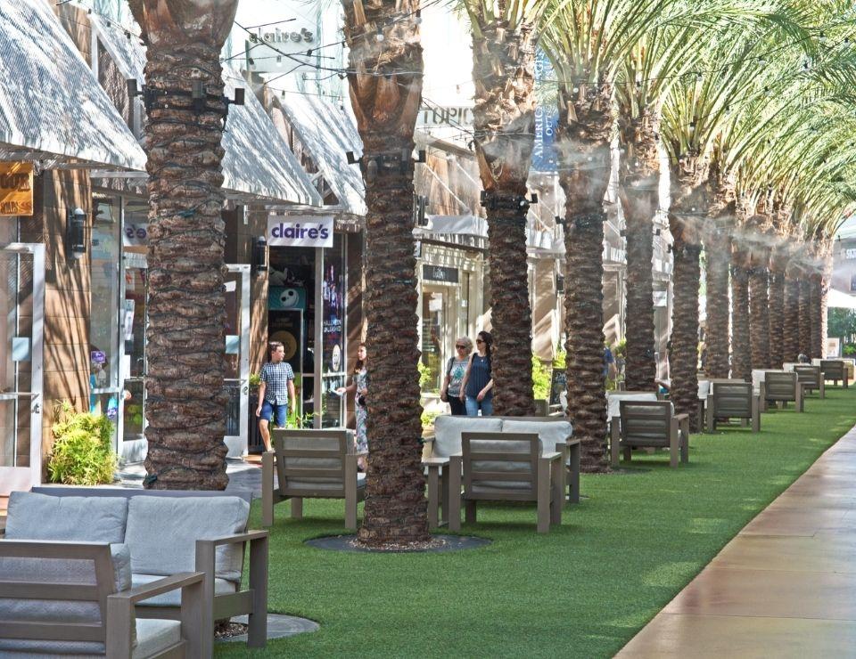 Desert Ridge Market Paid, Living in Phoenix Arizona