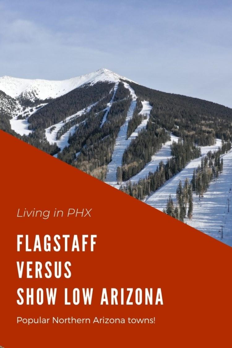 Flagstaff vs Show Low Arizona pins (2)