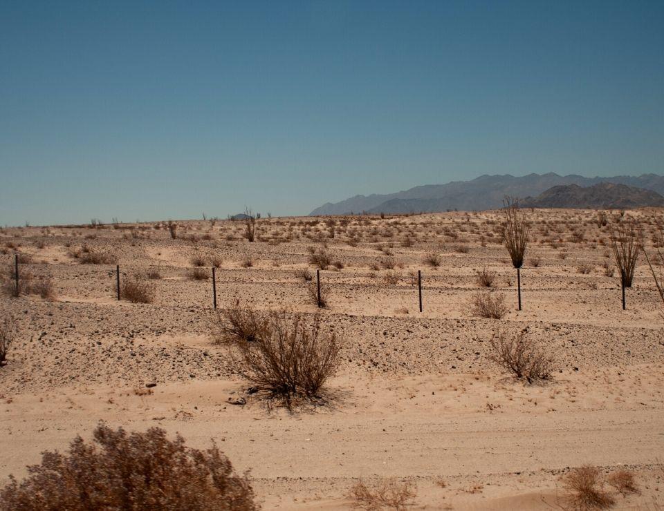 desert landscape in Phoenix Arizona, 10 Reasons NOT to move to Phoenix, Arizona