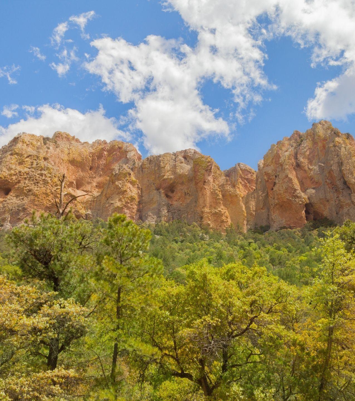Cave Creek neighborhood of Phoenix, Living in Phoenix Arizona