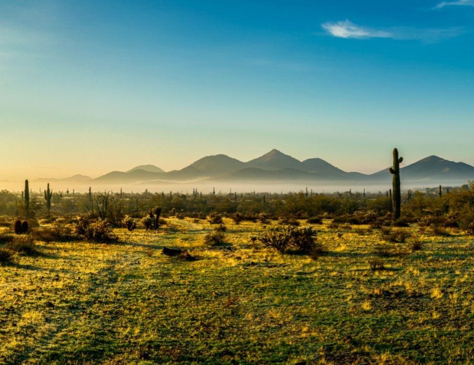 Sonoran Nature Preserve in Scottsdale, Living in Scottsdale vs Chandler Arizona
