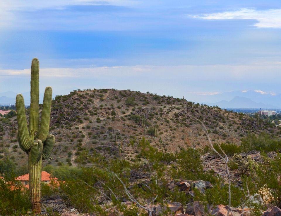 Foothills landscape near Ahwatukee AZ, 5 Reasons to Move to Ahwatukee Arizona (3)