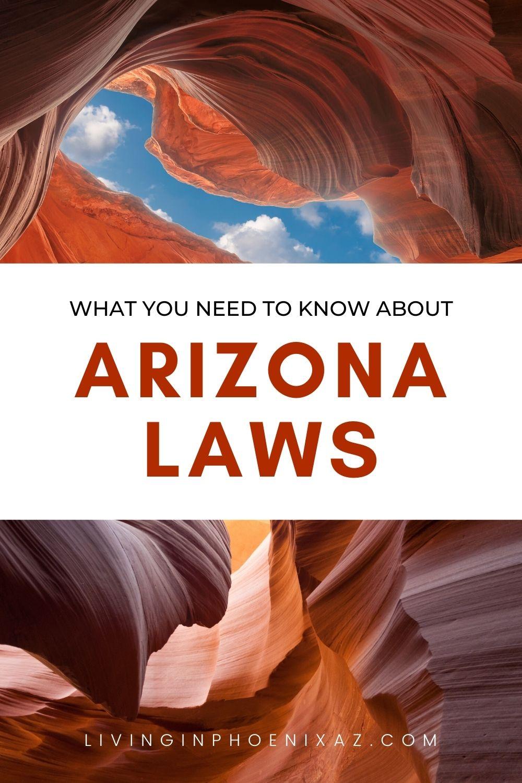 Unique Arizona Laws pins (1)