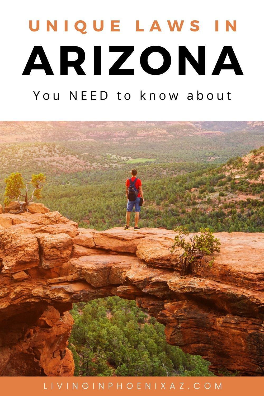 Unique Arizona Laws pins (5)