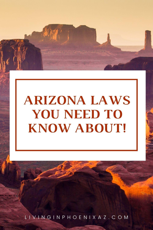 Unique Arizona Laws pins (6)
